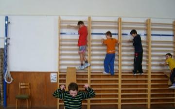 Základní škola - kroužky